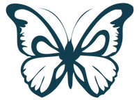 teal-butterfly