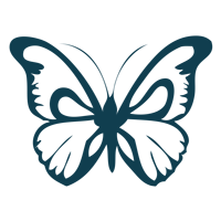 teal-butterfly1